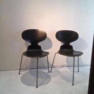Ant chairs